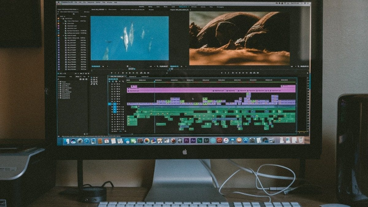 premiere pro plugins